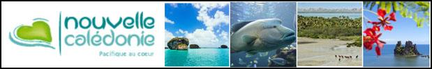 Nouvelle-Calédonie - Découvrez le site officiel du Tourisme